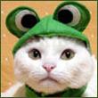 Аватар для YMD